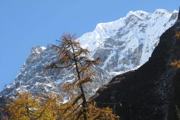 Nepal Kanchenjunga Trekking