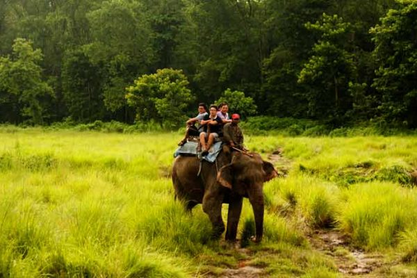 Kathmandu with the Jungle safari